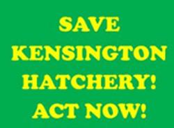 Save-the-Hatchery